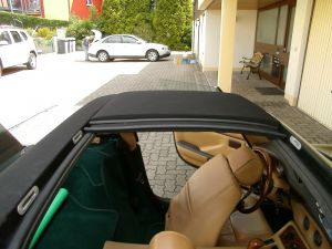 TVR S-Roof Panels-13
